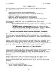 topluyokoluslar-tarihseljeoloji.pdf