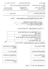 primaire6-science-activities-examen2010.doc